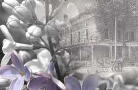 lombard-village-history